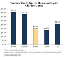 Welfare and race