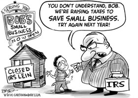 IRS vs small business